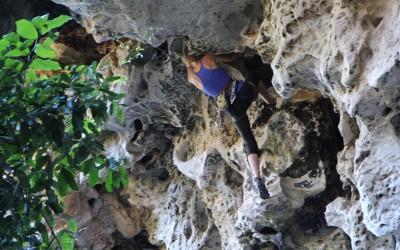 Climbing laos