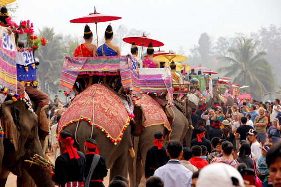 Pachyderm party (Elephant festival)